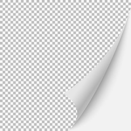 Paper blank page curled corner with shadow. Vector template illustration for your design Illustration