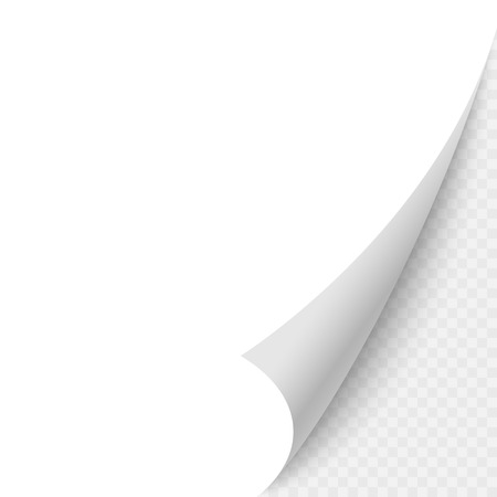 Paper blank page curled corner with shadow. Vector template illustration for your design 일러스트