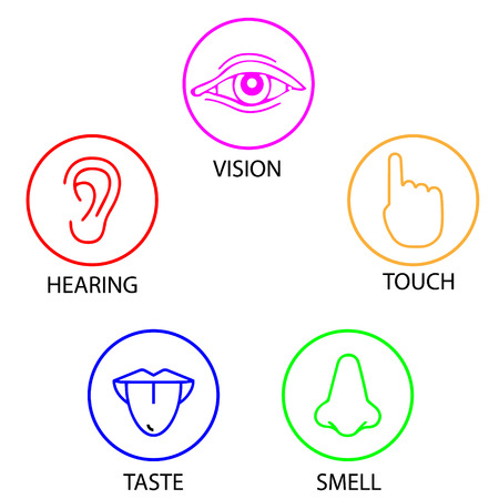 set of five human senses. Vision, hearing, touch, taste, smell icon