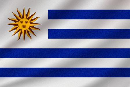 national flag of Uruguay on wavy cotton fabric. Realistic vector illustration.