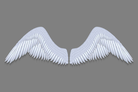 realistic white angel wings isolated