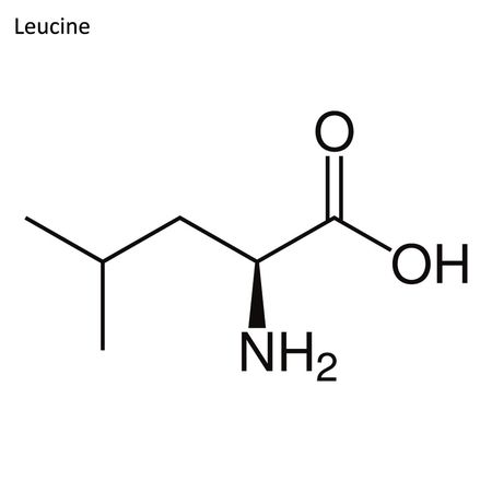 Skeletal formula. Amino acid molecule Illustration