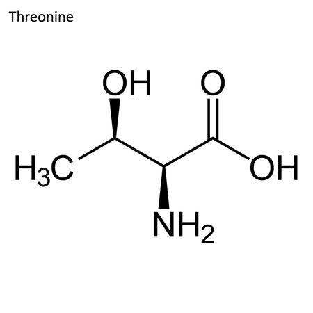 Fórmula esquelética. Molécula de aminoácidos