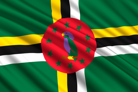 waving flag of Dominica. Vector illustration