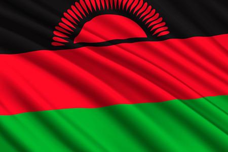 waving flag of Malawi. Vector illustration
