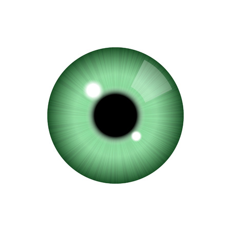 Realistic human eye on white background