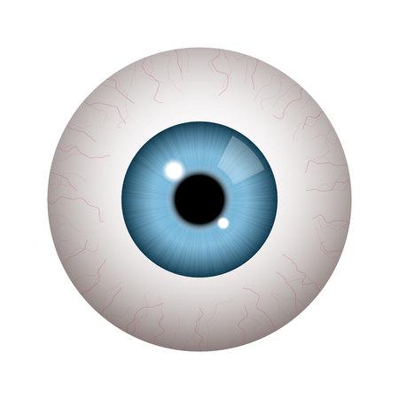 Globo ocular humano realista sobre fondo blanco. Ilustración de vector