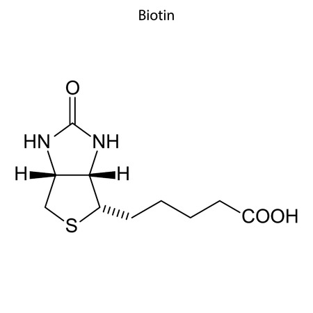 Skeletal formula of Biotin. Vitamin B 7 chemical molecule.
