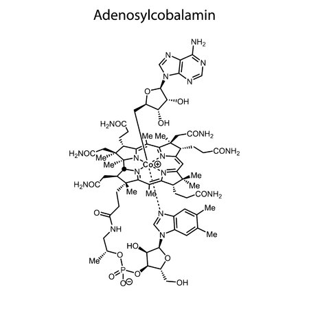 Skeletal formula of Adenosylcobalamin. Vitamin B 12 chemical molecule. Illustration