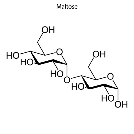 Skeletal formula of maltose. chemical molecule