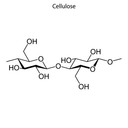 Skeletal formula of Cellulose. chemical molecule