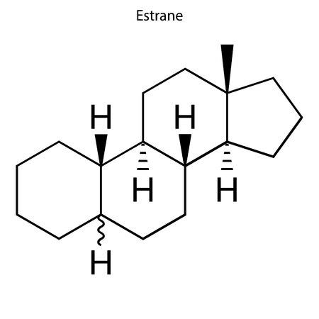 Skeletal formula of Estrane. hormone molecule