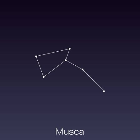 Musca constellation as it can be seen by the eye.