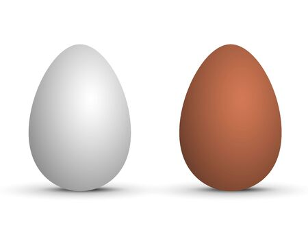 Two vector realistic eggs. Isolated eggs on white background.