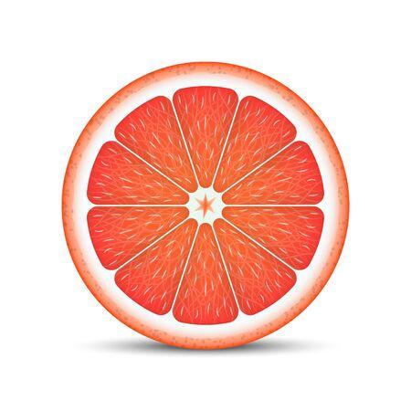 Realistic grapefruit slice isolated on white background.