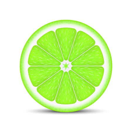 Realistic lime slice isolated on white background.