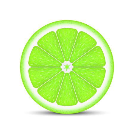 Tranche de citron vert réaliste isolé sur fond blanc.