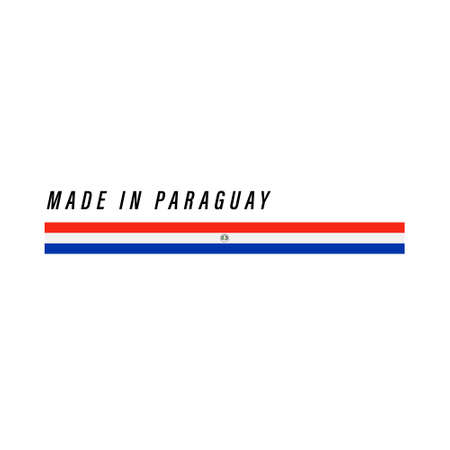 Made in Paraguay, badge or label with flag isolated on white background