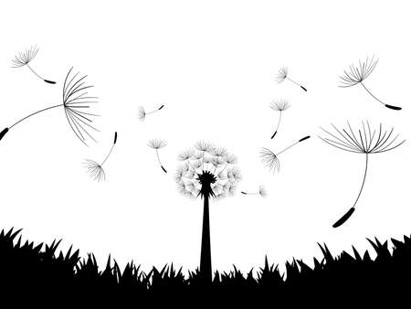 directly: Blow Dandelion. Directly below. Vector Illustration