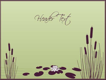 pantanos: Fondo de Lily y totora