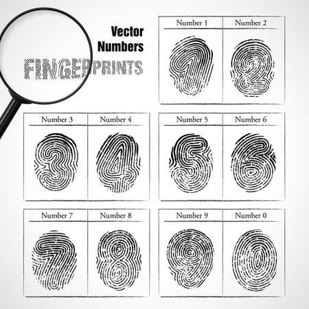 odcisk kciuka: Ilustracji wektorowych z numerem