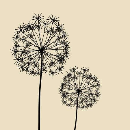 Floral Elements for design, dandelions.