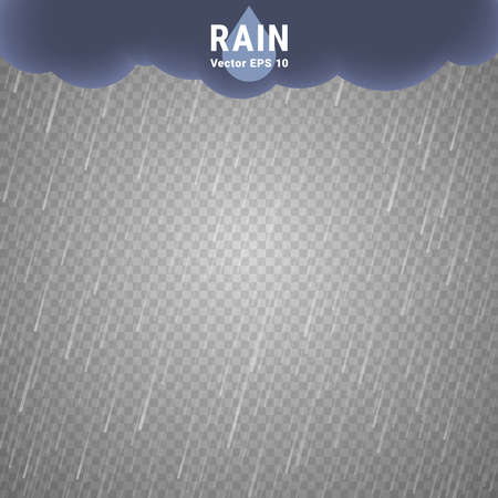 vector image: Transparent Rain Image. Vector Rainy Cloudy background Illustration