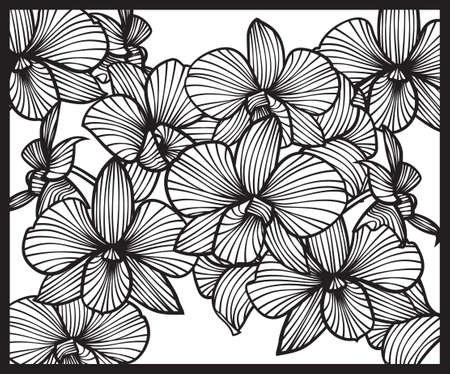 Boeket van orchideeën. Patroon van orchideeën. Vector orchideeën. Set van vector orchideeën. Geïsoleerde orchideeën op een witte achtergrond