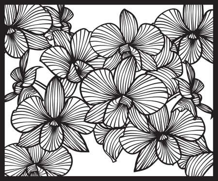 ramo de flores: Ramo de orquídeas. Patrón de orquídeas. orquídeas Vector. Conjunto de orquídeas vector. orquídeas aisladas sobre un fondo blanco Vectores