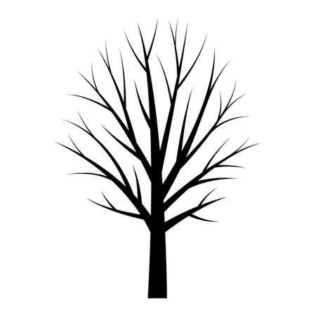Tree black silhouette. Free tree template on white background, autumn tree - Vector