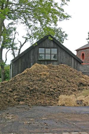 manure: Manure Heap on Farm