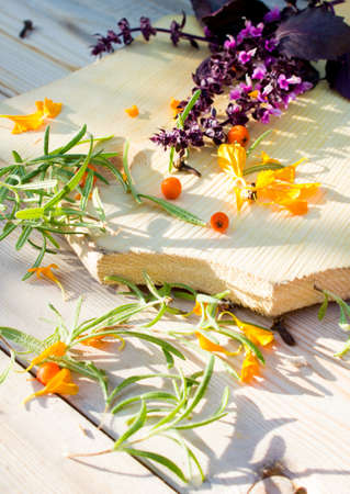 Flowers, basil and mountain ash on a wooden background. Autumn harvest