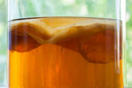 Natural kombucha fermented tea beverage healthy organic drink in vintage glass close up texture. Superfood pro biotic japanese fungus