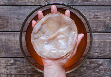 Kombucha fungus in unrecognizable man hand. Healthy organic pro biotic fermented tea beverage.  Natural light and rustic style