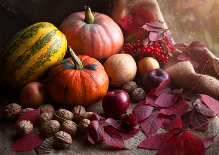 herfst eten: Autumn food design decoration composition with rustic harvest. Pumpkin, nuts, apples, and red leaves on vintage wooden background. Natural light and rustic style.