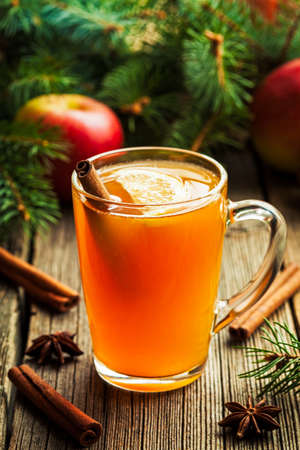 Hot toddy traditional winter alcohol warming drink recipe. Homemade christmas holiday aromatic beverage with spices.  Rustic style.