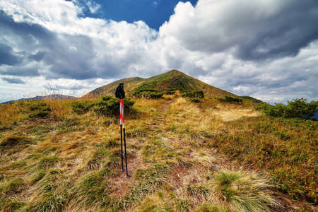 Trekking poles on hills with yellow grass scenic outdoor hiking view