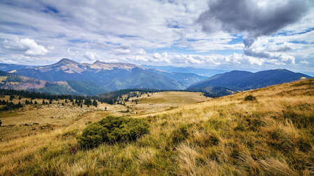 Hills with yellow grass scenic outdoor expedition travel view, autumn rural landscape.