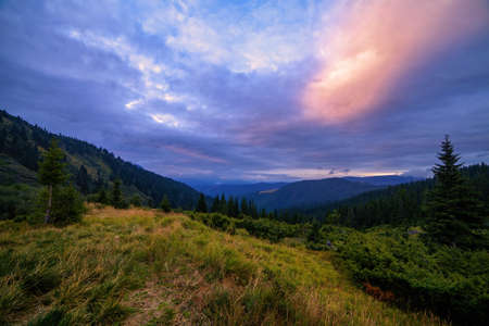 Beautiful sunset in mountains panorama, evening with colorful clouds and fir trees forrest scene