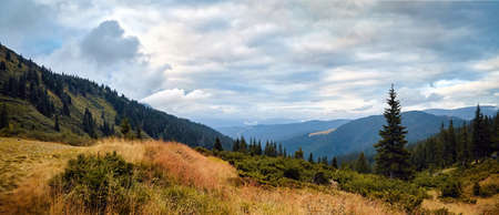 Mountains panorama, day with beautiful clouds and fir trees scene