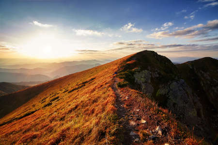 Beautiful sunset over the mountain peaks and hills panorama with vibrant yellow grass Archivio Fotografico