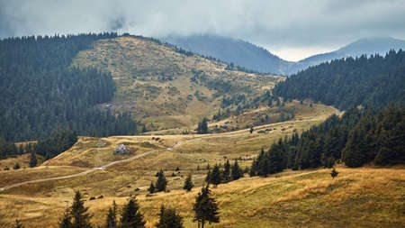 Beautiful hills with yellow grass scenic outdoor expedition travel view, autumn rural landscape. Archivio Fotografico