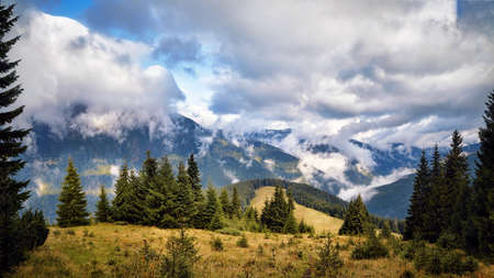 Forrest in mountains panorama, sunny day with beautiful clouds scene. Archivio Fotografico