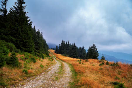 Mountains road forrest hiking landscape travel sce