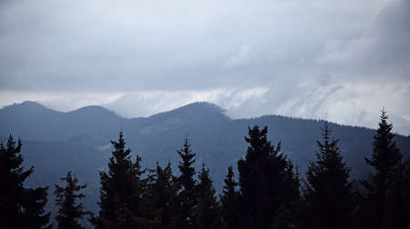 Mountains and forrest landscape with cloudy sky and foggy sky