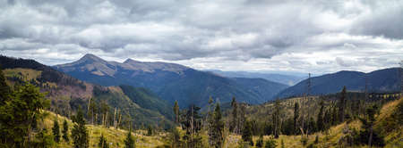 Forrest in mountains panorama with beautiful clouds scene. Archivio Fotografico