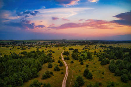 Colorful sunset sky with countryside road in the pine forest outdoors nature travel concept Archivio Fotografico