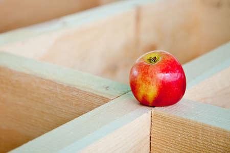 wooden joists: Apple on wooden joists