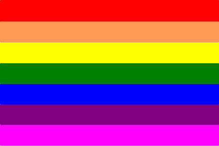 LGBT flag with different kinds of color