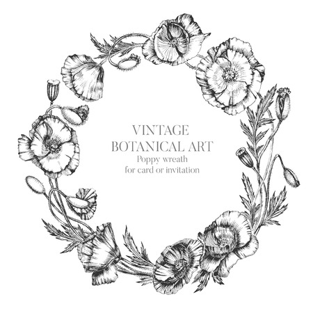 Flower wreath of poppy flowers, buds and leaves. Botanical hand drawn realistic illustration with indian ink. For artwork, invitation, card in vintage style Иллюстрация